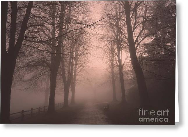 Eerie Greeting Cards - A Stroll In The Mist Greeting Card by Callan Percy