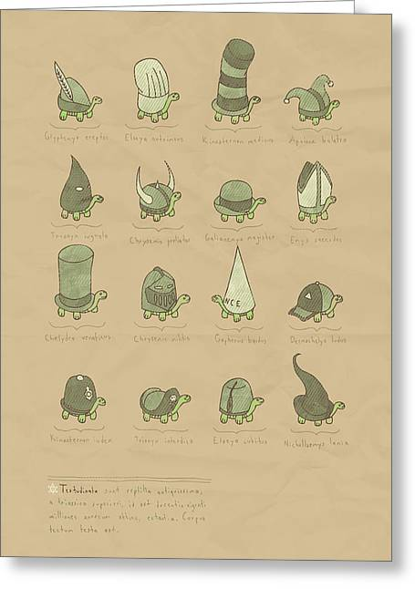 Dunce Greeting Cards - A Study of Turtles Greeting Card by Hector Mansilla