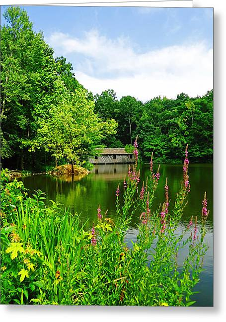 Alabama Greeting Cards - A Summers Day in Alabama Greeting Card by Mountain Dreams