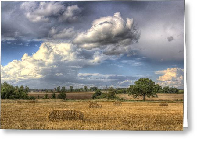 Farmers Field Greeting Cards - A Summers Evening Farm Greeting Card by David Pyatt