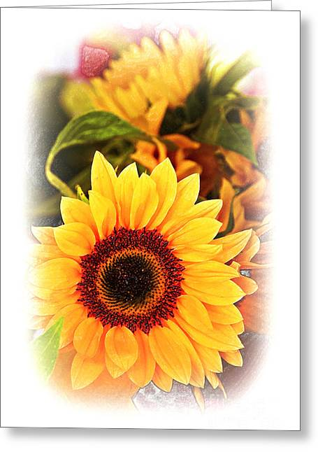 Canadian Photographer Greeting Cards - A Sunny Disposition Greeting Card by Al Bourassa