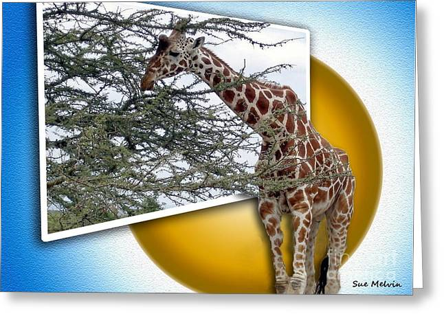 A Taste from the Other Side Greeting Card by Sue Melvin