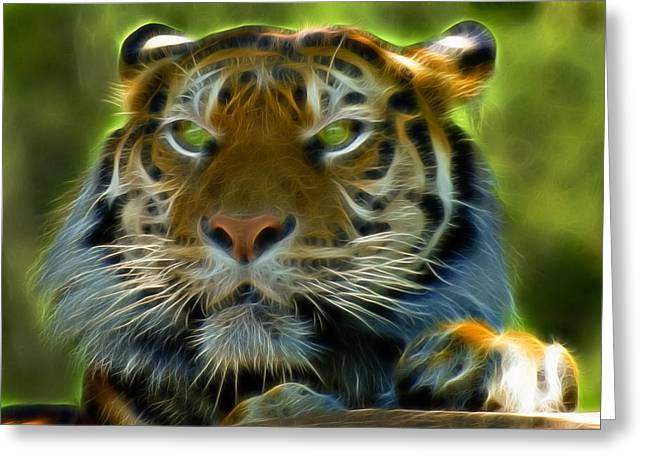 Tiger Fractal Greeting Cards - A Tigers Stare II Greeting Card by Ricky Barnard