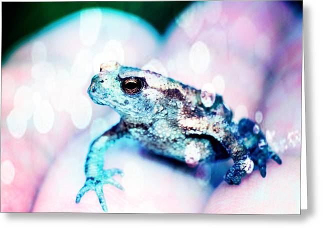 Development Greeting Cards - A tiny frog Greeting Card by Toppart Sweden
