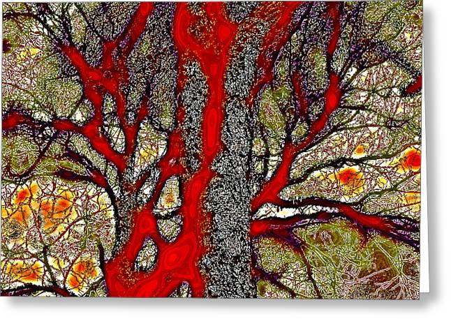 Reds Of Autumn Digital Greeting Cards - A Touch of Autumn Abstract IV Greeting Card by David Patterson