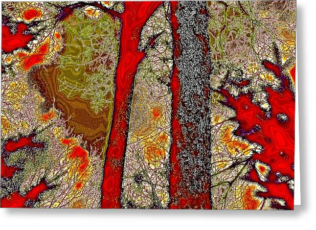 Reds Of Autumn Digital Greeting Cards - A Touch of Autumn Abstract V Greeting Card by David Patterson