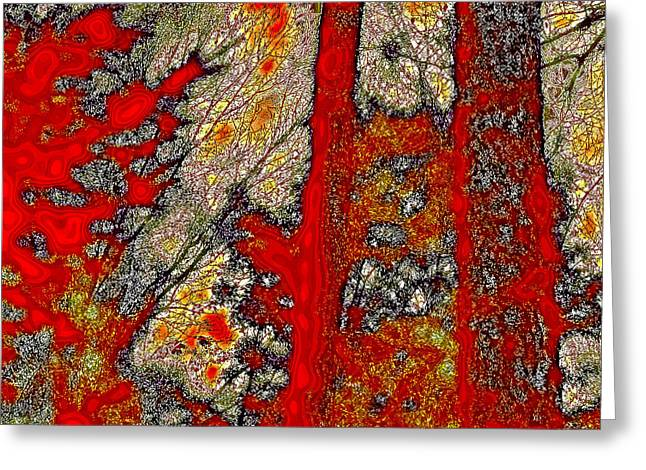 Reds Of Autumn Digital Greeting Cards - A Touch of Autumn Abstract VI Greeting Card by David Patterson
