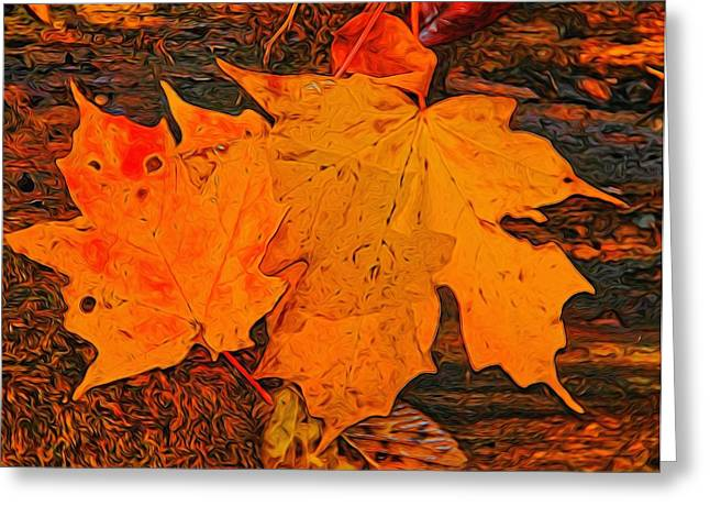 Reds Of Autumn Mixed Media Greeting Cards - A Touch Of Autumn Greeting Card by Dan Sproul