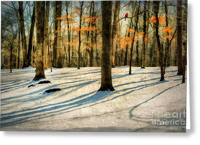 A Touch Of Autumn Greeting Card by Darren Fisher