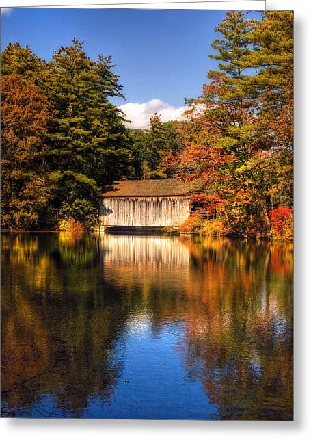 A Touch Of Autumn Greeting Card by Joann Vitali