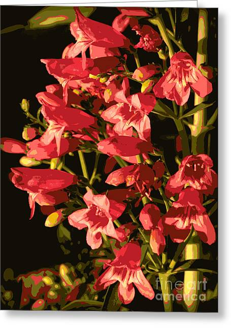 Coral Colors Greeting Cards - A Touch of Coral Greeting Card by Carol Groenen