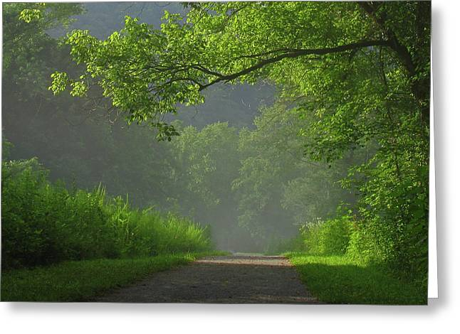 Douglas Stucky Greeting Cards - A Touch of Green Greeting Card by Douglas Stucky