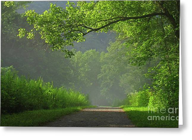 Douglas Stucky Greeting Cards - A Touch of Green II Greeting Card by Douglas Stucky