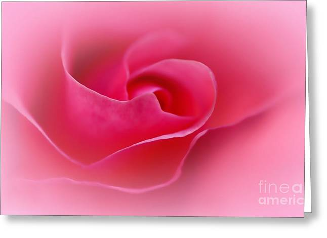 Gentleness Greeting Cards - A Touch of Softness Greeting Card by Kaye Menner