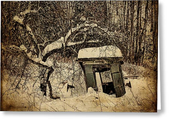 Shed Digital Art Greeting Cards - A Tree and its Shack Greeting Card by Pamela Phelps