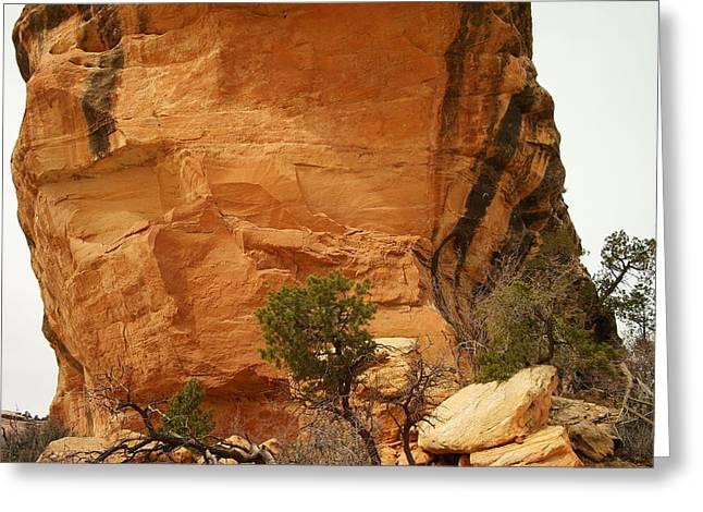 Southern Utah Greeting Cards - A Tree Below The Bridge Greeting Card by Jeff  Swan