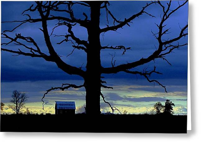 Capote Greeting Cards - A Tree Of Night Greeting Card by Robin McLeod