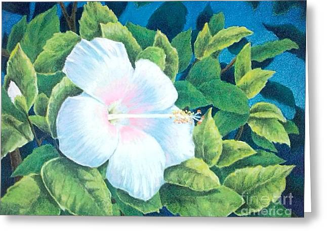 Florida Flowers Pastels Greeting Cards - A Tropical Beauty Greeting Card by Ace Robst Jr