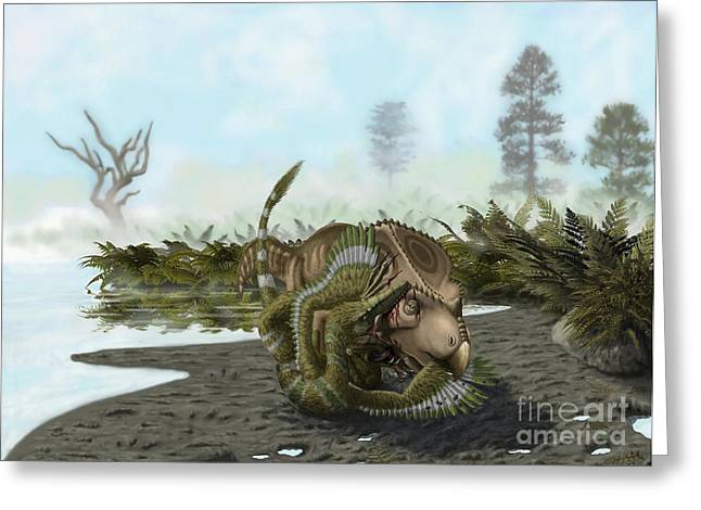 Dromaeosaurid Greeting Cards - A Velociraptor Attacks A Protoceratops Greeting Card by Yuriy Priymak