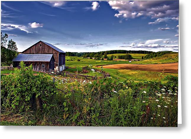 Verdant Greeting Cards - A Verdant Land II Greeting Card by Steve Harrington