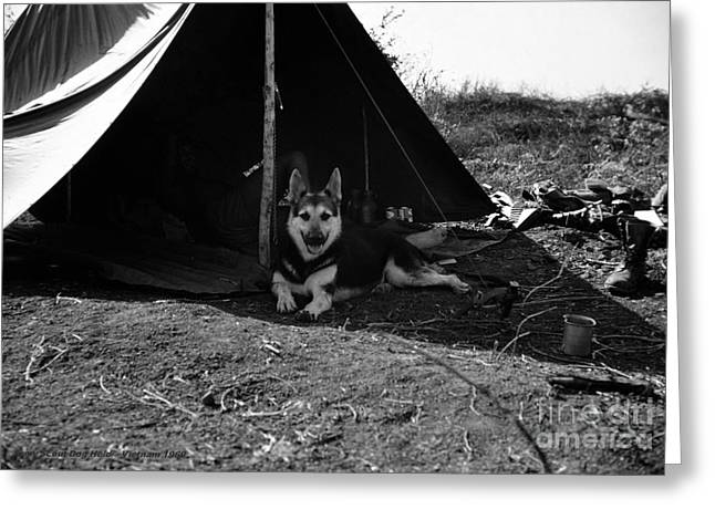 Recon Greeting Cards - A Vietnam Camping Trip Greeting Card by Mel Steinhauer
