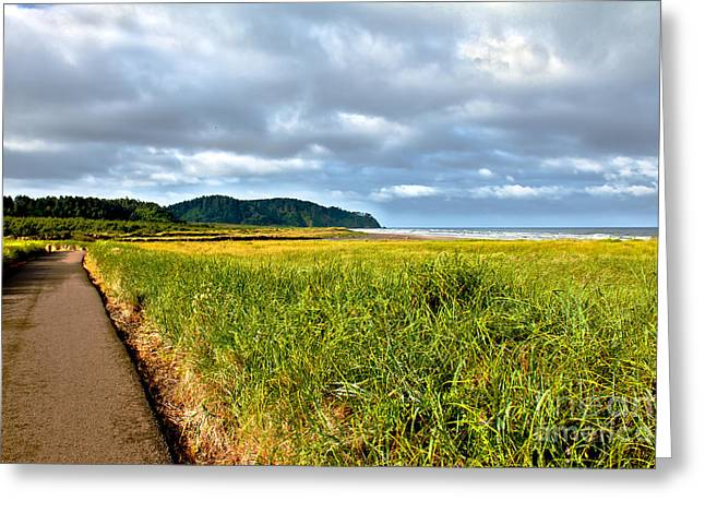 Seacape Greeting Cards - A View From Discovery Trail Greeting Card by Robert Bales