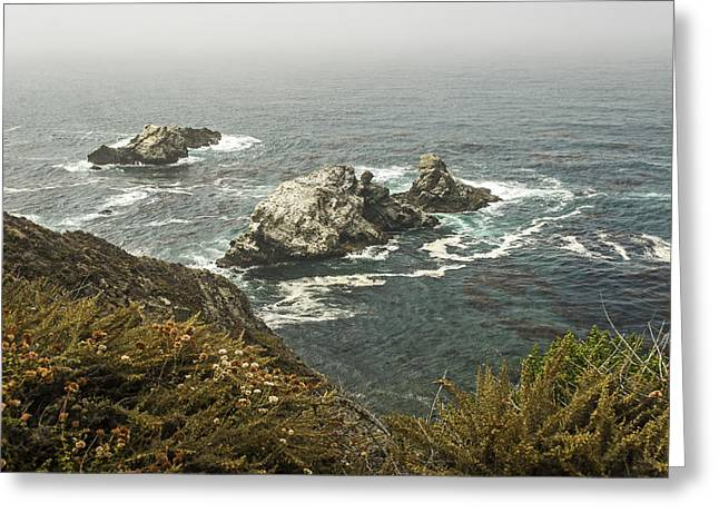 Coast Highway One Greeting Cards - A View From The Pacific Coast Highway  California Greeting Card by Willie Harper