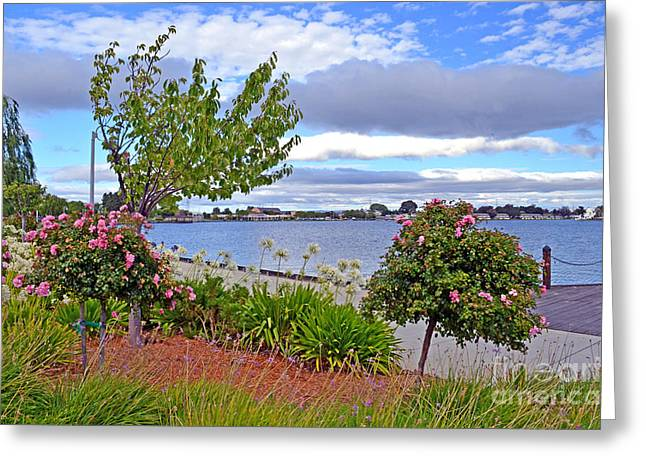 Congressman Greeting Cards - A View of Congressman Leo Ryan Memorial Park in Foster City Greeting Card by Jim Fitzpatrick