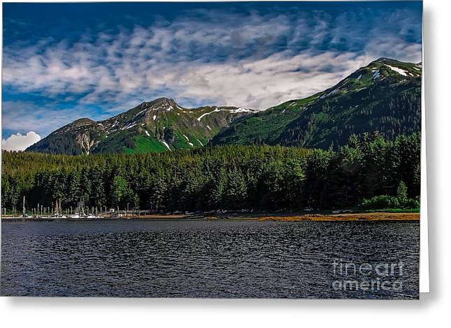 Southeast Alaska Greeting Cards - A View of Tenakee Springs Greeting Card by Robert Bales
