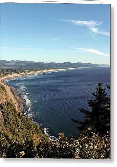 Reserve Greeting Cards - A View Point Greeting Card by Chris Anderson