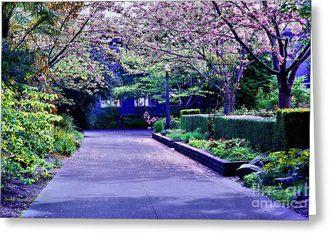 Lake Union Greeting Cards - A Walk in the Garden Greeting Card by Cheryl Young