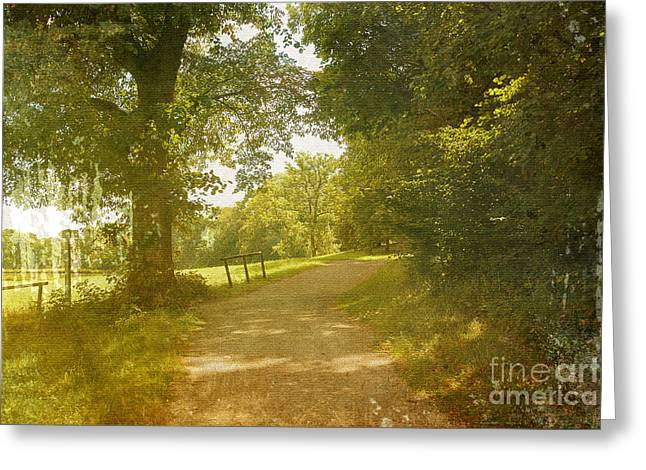Sunflare Greeting Cards - A Walk in the Park  Greeting Card by Ivy Ho