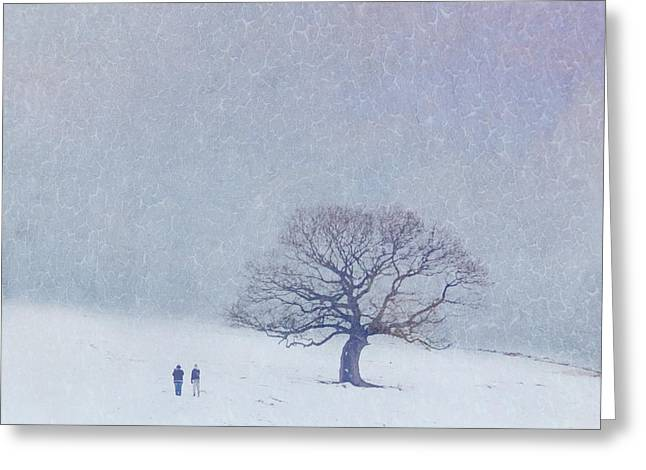 Lyn Randle Greeting Cards - A walk in the snow Greeting Card by Lyn Randle