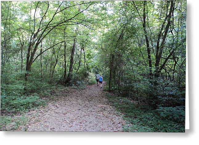 Hiking Glass Greeting Cards - A walk in the woods Greeting Card by Dennis Garrison