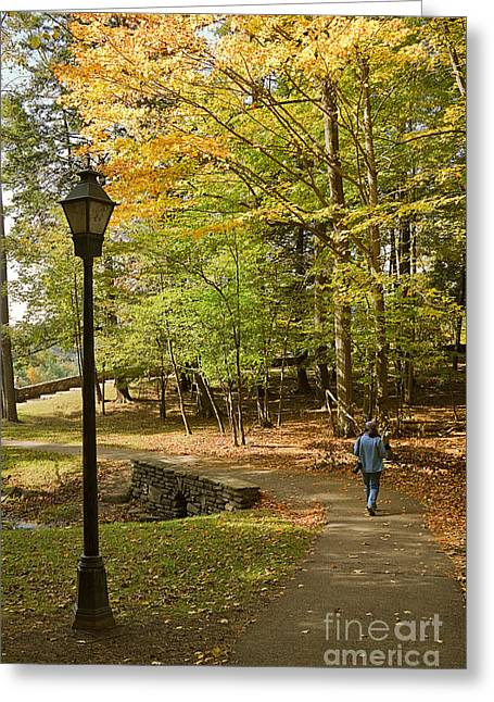 Stroll In The Park Greeting Cards - A Walk in the Woods Greeting Card by Louise Heusinkveld