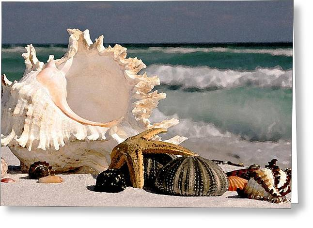 Ocean Photography Drawings Greeting Cards - A Walk on the Beach Greeting Card by Cole Black