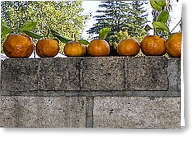 Tangerine Greeting Cards - A wall of tangerines 2 Greeting Card by Rebecca Dru