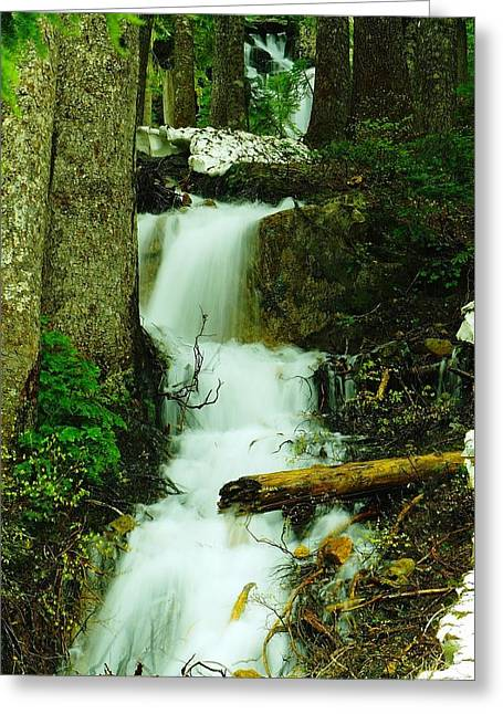 Water Flowing Greeting Cards - A Waterfall In Spring Thaw Greeting Card by Jeff  Swan