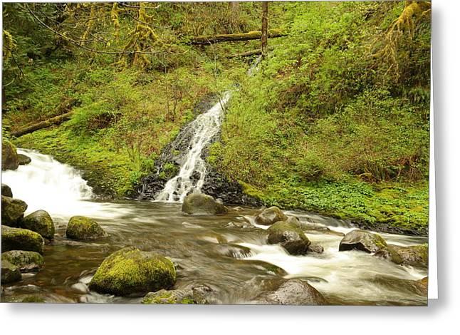 Oneida Greeting Cards - A Waterfall Into Oneida Creek Greeting Card by Jeff  Swan