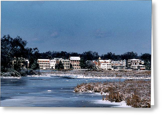 A Waterfront Christmas Greeting Card by Skip Willits