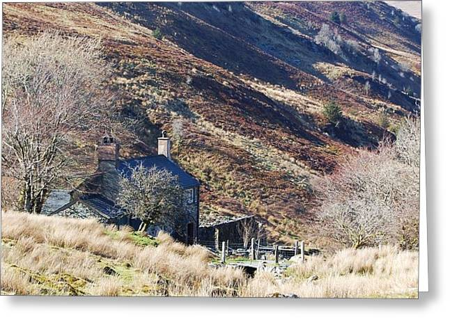 Wales Greeting Cards Greeting Cards - A Welcome In The Hillside Greeting Card by Courtney Dagan