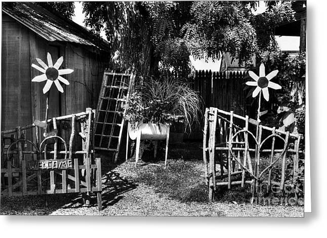 Indiana Flowers Greeting Cards - A Welcome Sign BW Greeting Card by Mel Steinhauer