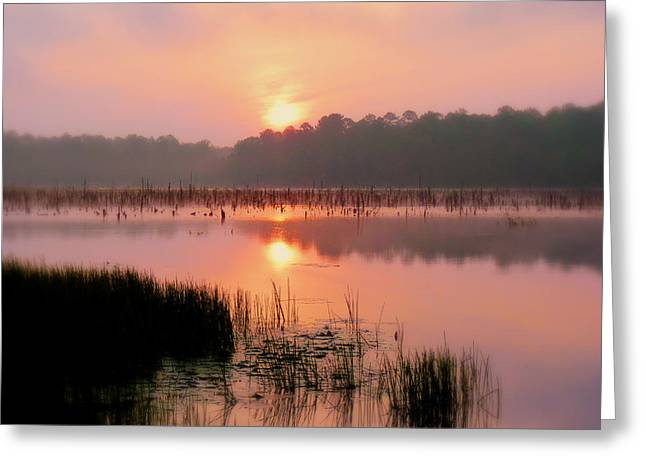 Ozark Alabama Greeting Cards - A Wetlands Sunrise Greeting Card by JC Findley