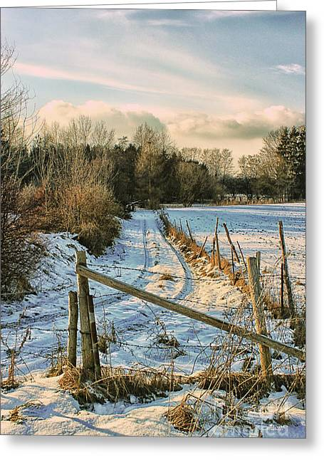 Winterly Greeting Cards - A Whiff of Winter Greeting Card by Jutta Maria Pusl