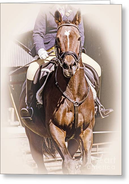 Showjumping Greeting Cards - A Willing Servant Greeting Card by Linsey Williams
