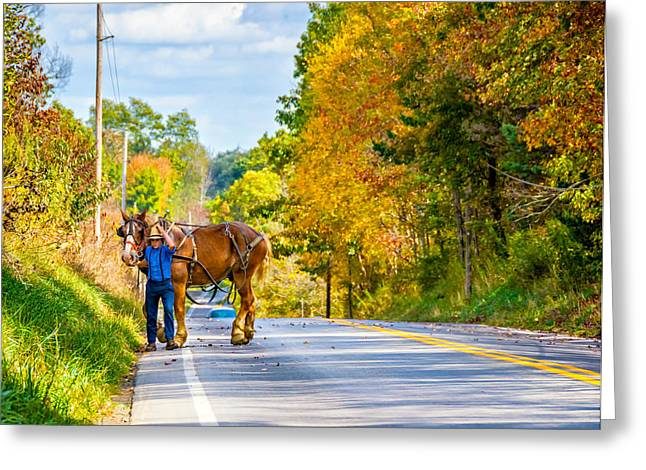 Amish Man Greeting Cards - A Windy Day Greeting Card by Steve Harrington