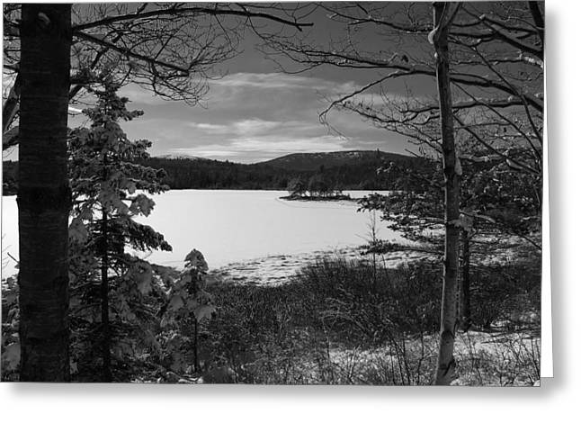 Maine Landscape Greeting Cards - A Winter Lake in Maine Greeting Card by Mountain Dreams