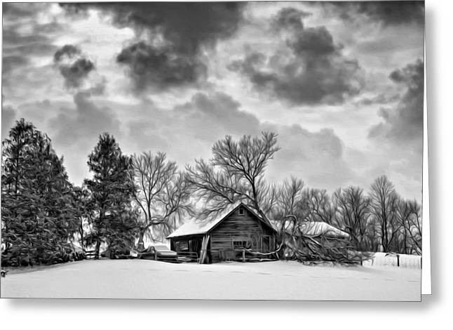 Snow Tree Prints Greeting Cards - A Winter Sky - Oil bw Greeting Card by Steve Harrington