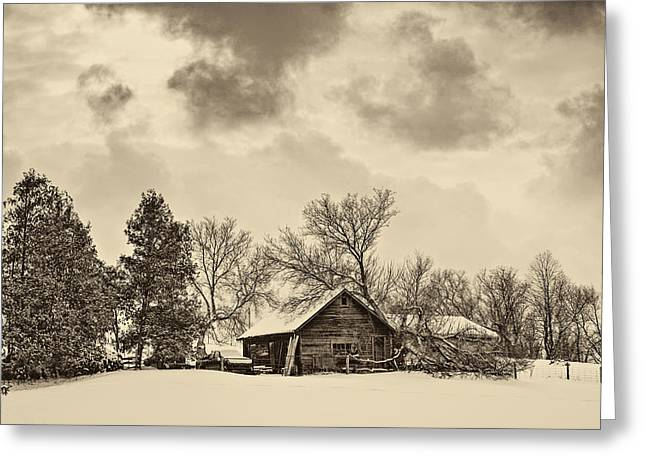 Snow Tree Prints Greeting Cards - A Winter Sky sepia Greeting Card by Steve Harrington