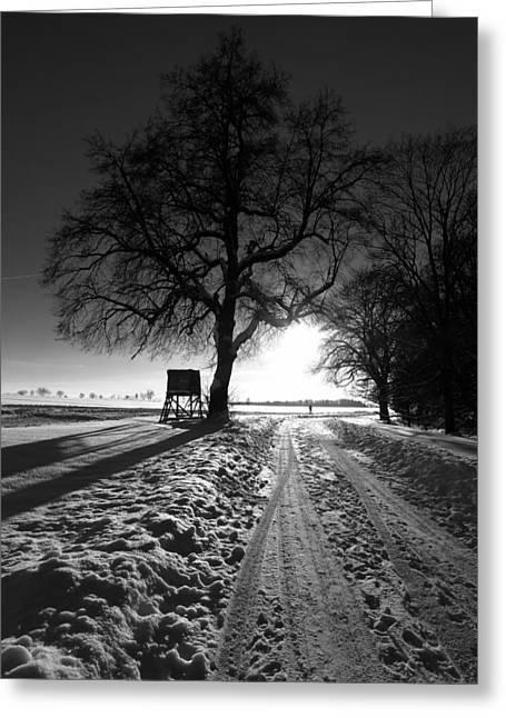 Farm Stand Greeting Cards - A Winter Sunset Greeting Card by Mountain Dreams